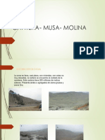 CANTERA-MUSA-MOLINA.pptx