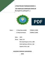 laporan simplisia kencur.docx