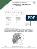 Tratamiento Quirúrgico de La Neuralgia Del Trigémino - Copia