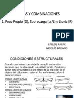 Análisis de Cargas 2019 - D+L