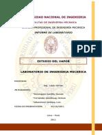 231864587-Estudio-Del-Vapor.pdf