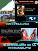 patologia especial.pptx