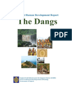 4.The Dangs_DHDR_July 2015.pdf