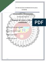 Reporte CFE