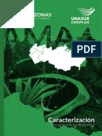 Caracterización EJE AMAZONAS Final