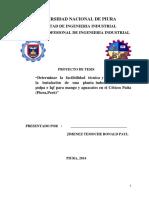 UNIVERSIDAD_NACIONAL_DE_PIURA_FACULTAD_D.pdf
