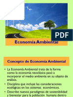 Economía Ambiental OK