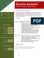 CV Template 6