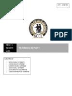 Report GDK 11
