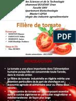 Fili Re de Tomate GR04