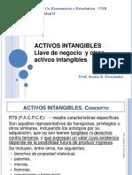 activos_intangibles_y_llave.pdf
