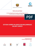 Estudo Salario Mocambique Salary Survey