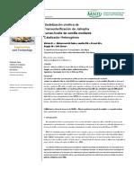 Modelización cinética de Transesterificación de Jatropha curcas Aceite de semilla mediante Catalizador Heterogéneo