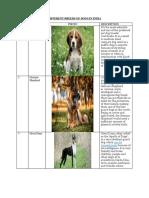 Dog details