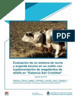 Inta Evaluacion de Un Sistema de Recria y Engorde Bovino en Un Mallin Con Suplementacion de Megafardos de Alfalfa en Estancia San Cristobal