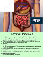 Chapter 6-Human Digestion