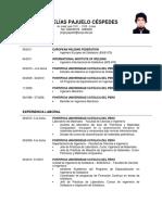 CV Jorge Pajuelo 2019