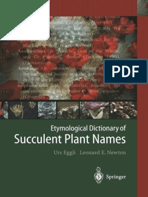 1x fresh cutting very rare and hardy! Pterocactus reticulatus