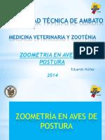 Zoometrica Aves