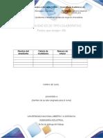 Plantilla Para Entrega de La Fase 1. Definir El Problema e Identificar La Idea de Negocio Innovadora