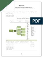 Proyecto_Final_1.docx