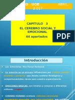 usar_cerebro_2.pptx