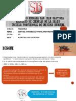 dengue. rabia