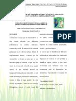 12232-Texto del artículo-57628-1-10-20170621 (1).pdf