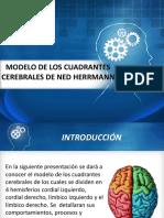Modelo de Los Cuadrantes Cerebrales de Hermnn
