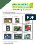 Animales-Nativos-y-Exóticos-para-Tercero-de-Primaria.pdf