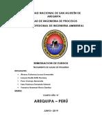 REM. AGUA DE PESQUERA.docx