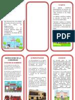 Triptico-Instituciones-de-La-Comunidad.docx