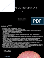 Lâminas de Histologia II p2