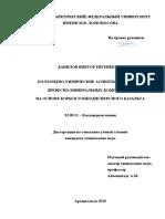 Диссертация Данилов В.Е.