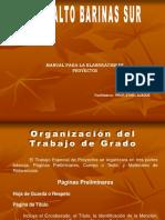 Manual Proyectos i