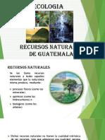 Grupo No. 2 Ecologia
