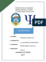 MONOGRAFIA SENTIDOS.docx
