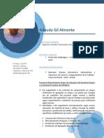 Adeudy Gil Almonte CV.docx