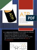 ATP.pptx