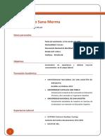 Curriculo de Vida Jose Sana Merma (1)