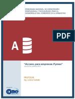 65_ Access para empresas Pymes - Introducción (pag1-9).pdf