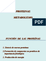 Metabolismo proteina