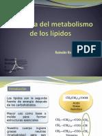 Fisiología del metabolismo de los lípidos