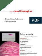 laminas histologicas