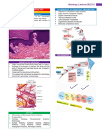 INTRODUCTION TO HISTOLOGY.pdf