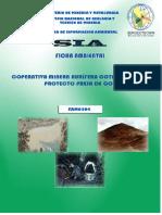 252760715 Ficha Ambiental Colas PDF