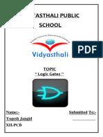 Vidyasthali Public
