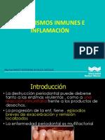mecanismos inmunes e inflamatorios