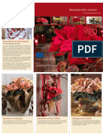 Download Leporello Weihnachtsstern 11