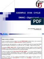 Exemple DMAIC 6Sigma PDF